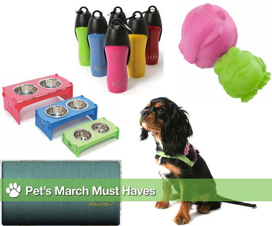 Pet's March Must Haves