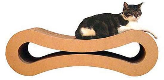The Sweet Kitty Lounge Winner Is . . .