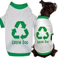Eco-Friendly Pet Essentials