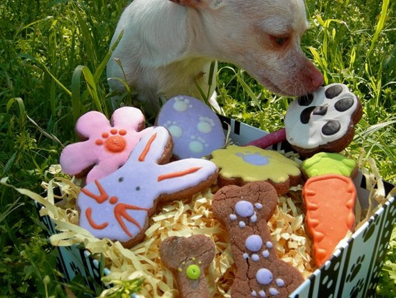 Easter Doggie Gift Box