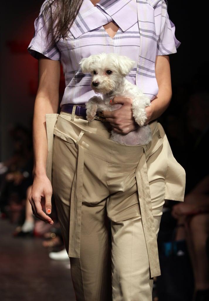 Fashion Forward or Fashion Faux Pas?