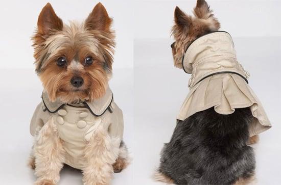 Juicy Pet Clothing