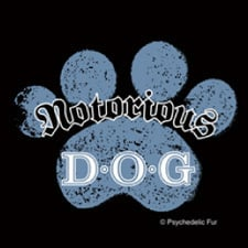 Notorious D.O.G. Tee ($21)