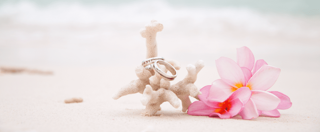 This Gorgeous Beach Wedding Will Put You in the Mood For Summer