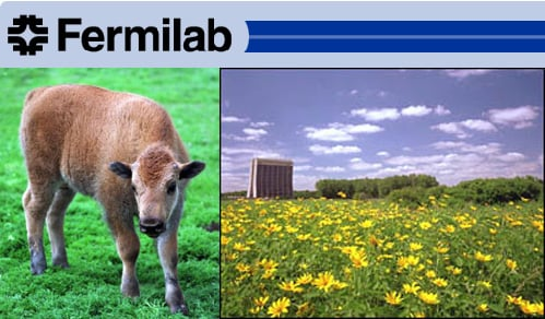 Out and About: Illinois' Fermilab