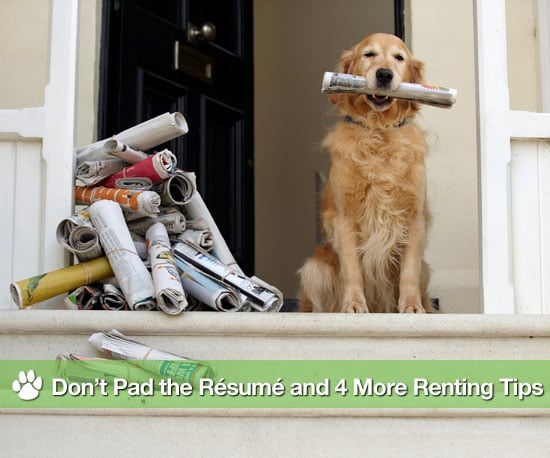 Advice For Renting With Pets