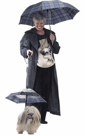 Dog Umbrella: Spoiled Sweet or Spoiled Rotten?