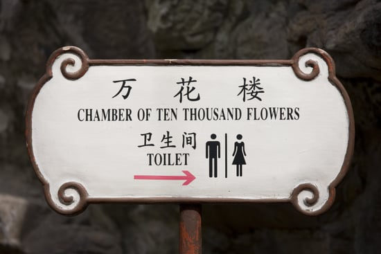 Briefing Book! Shanghai Upgrading Toilets For World Expo