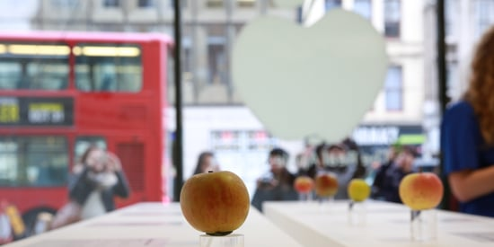This Isn't Your Typical Apple Store