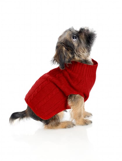Brooks Brothers   Cashmere Cable Dog Sweater (Now $49)