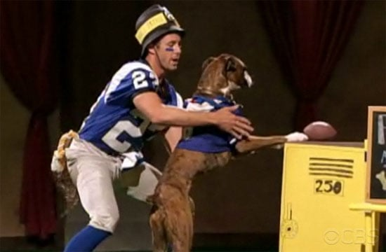 Greatest American Dog: All the Antics, All the Fun!