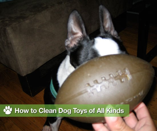 How to Clean Dog Toys