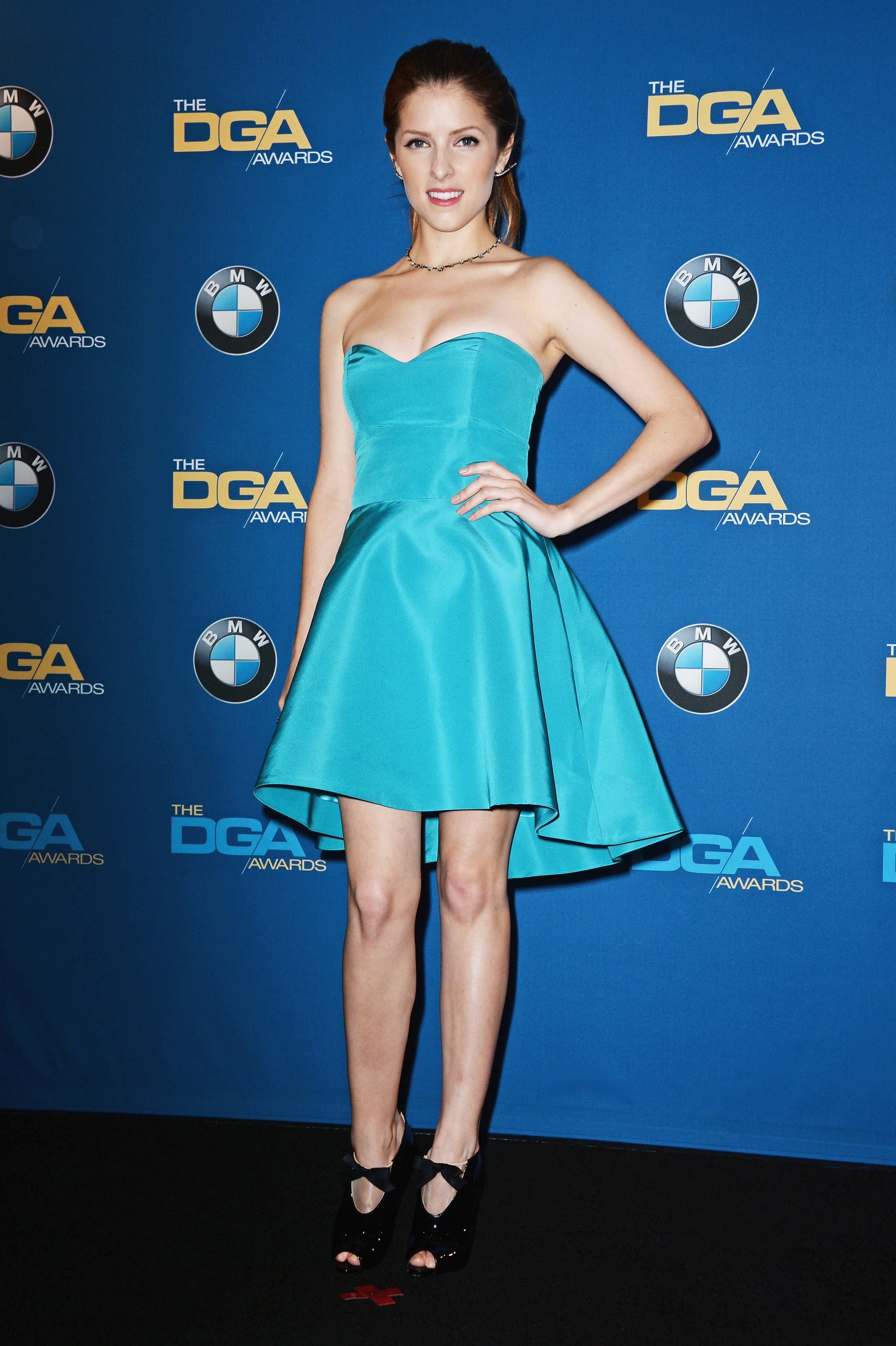 Anna Kendrick attended the Directors Guild Awards.