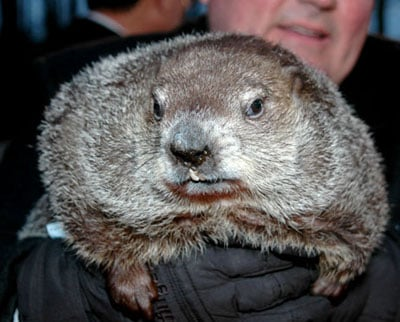 Groundhog Day 2008