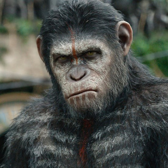 Dawn of the Planet of the Apes Pictures