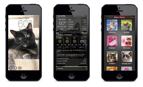 These Weather Apps Add Cute Cat Photos to Any Forecast