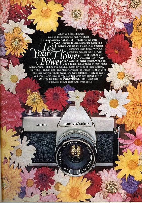 Flower power for the win.
