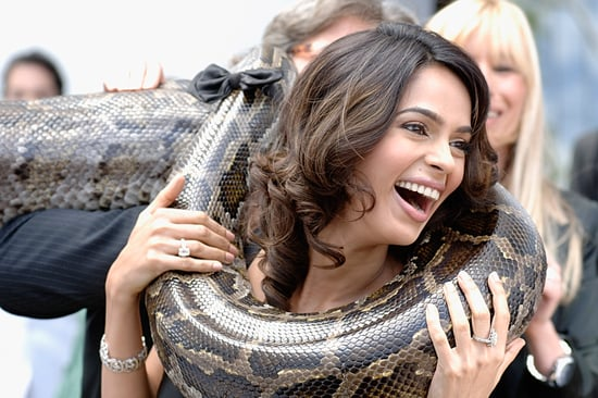 Photo of Mallika Sherawat Posing With Snake