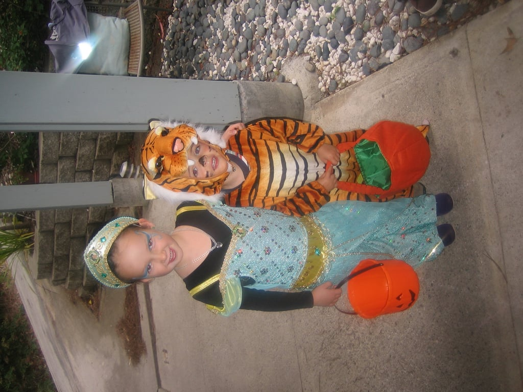 Pretty Princess and Ferocious Tiger