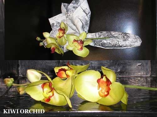 Steal of the Day: Kiwi Orchid Napkin Rings