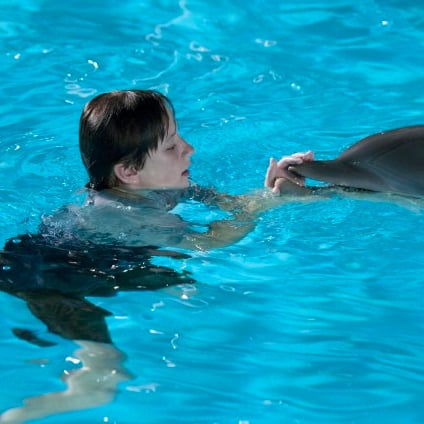 Dolphin Tale Wins First Place at the Box Office