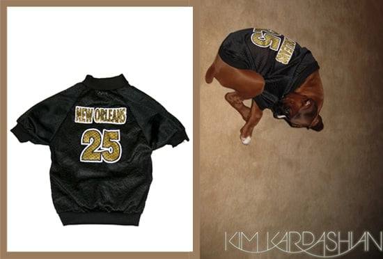 Found! #25 Saints Dog Jersey Worn by Reggie's Pooch, Rocky