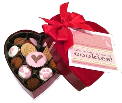 """On Valentine's Day, nothing says """"I love you"""" quite like a box of chocolates. Of course, we'd hate to poison our pups on a day celebrating love, so this box contains only treats suitable for poochy palates!"""