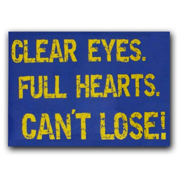 Friday Night Lights Panthers Clear Eyes Magnet ($6)