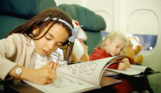 Plan For Flight Delays