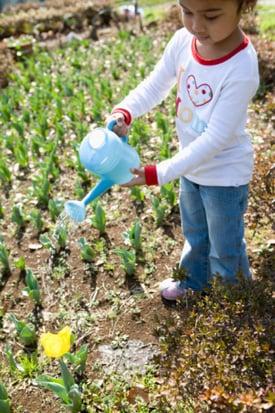 Gardening Tools for Kids 2010-03-09 11:00:18