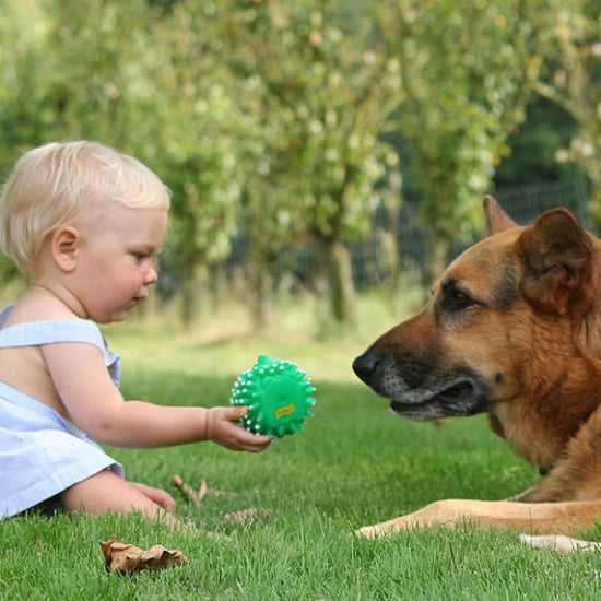Benefits of Dogs For Kids