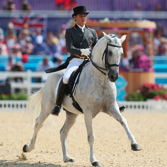 Horse Breeds and Types in Olympic Equestrian Sports