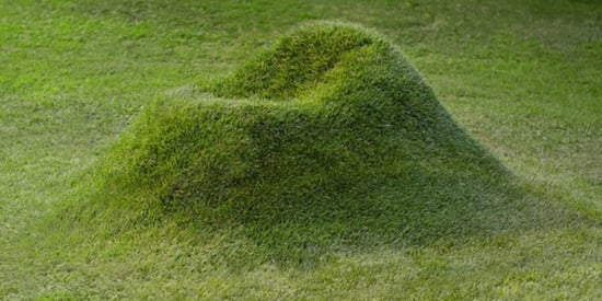 This Grow-Your-Own Grass Chair Is All Kinds Of Backyard Goals