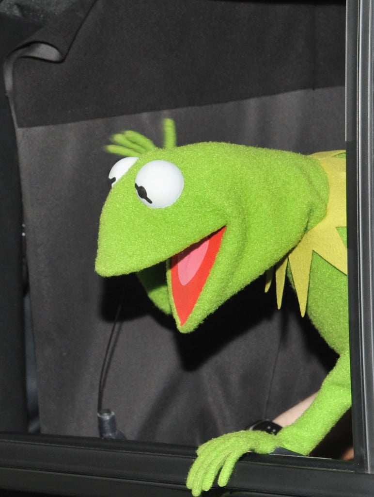 Kermit was the star of the show.