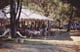 Campsite Reception