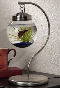 Hanging Aquarium from Opulent Items