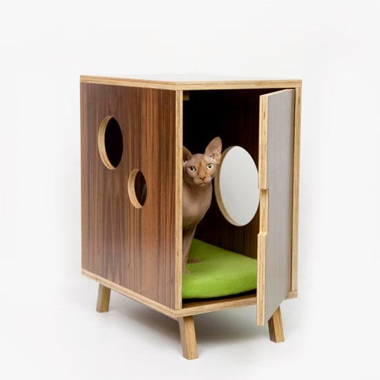 Stylish and Fashionable Cat Litter Boxes