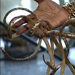 See the Atlanta Woman With 20-Inch-Long Fingernails