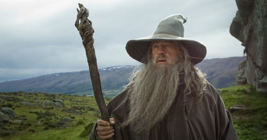 Sorry Nerds, Ian McKellen Won't Officiate Your Expensive Lord of the Rings–Themed Wedding