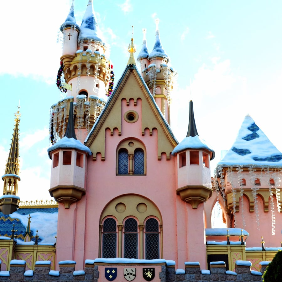 visit to disneyland essay Find essay examples get a cultural analysis paper on a visit to disneyland and/or california adventure theme parks cultural analysis paper on a visit to.