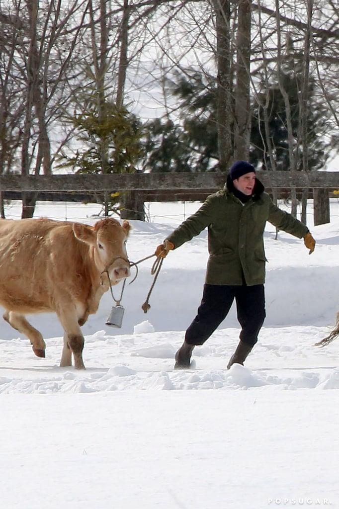 So, Robert Pattinson Is Herding Cattle Now