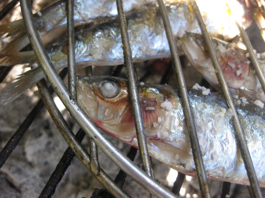 Grill the sardines for two to three minutes per side. The fish is fully cooked when the eyes turn a glossy white.