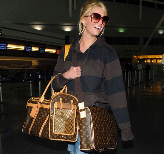 Found! What Costs More: Jessica's Bag or Dog Bag?