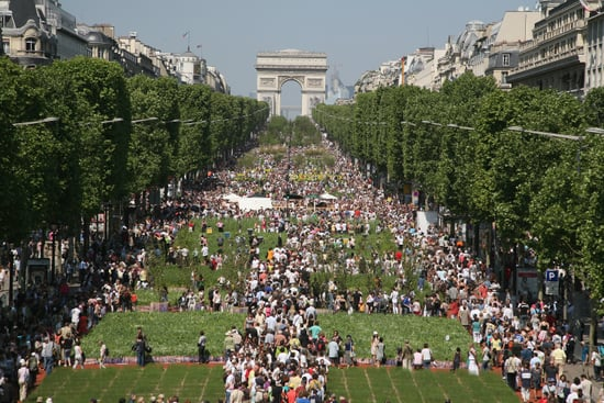 Pictures of Champs Elysees as Giant Garden