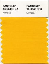 Pantone's Color of 2009 Is Mimosa