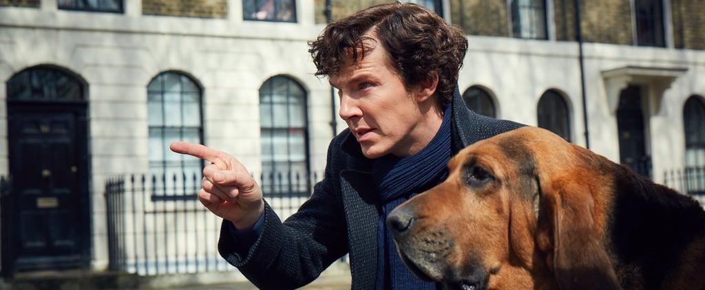 Watch the First Teaser Trailer For Sherlock Season 4