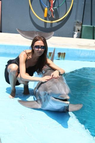 Victoria Beckham swam with the dolphins in July. Source: Twitter user victoriabeckham
