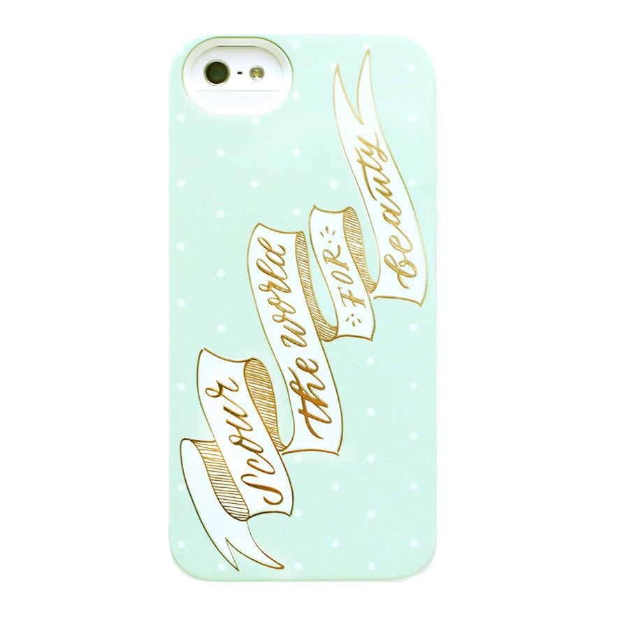 Scour the World iPhone 5/5S Case
