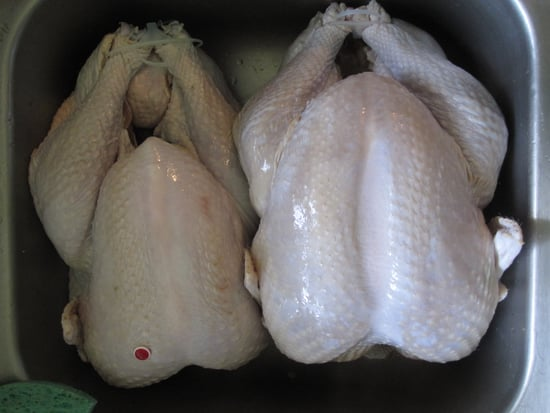 Do You Spend More For an Organic, Free-Range, or Local Turkey?