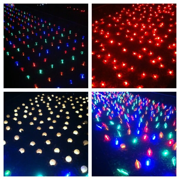 All the pretty lights! Jess visited Centennial Park in Sydney to check out The Light Garden. Pretty, no?